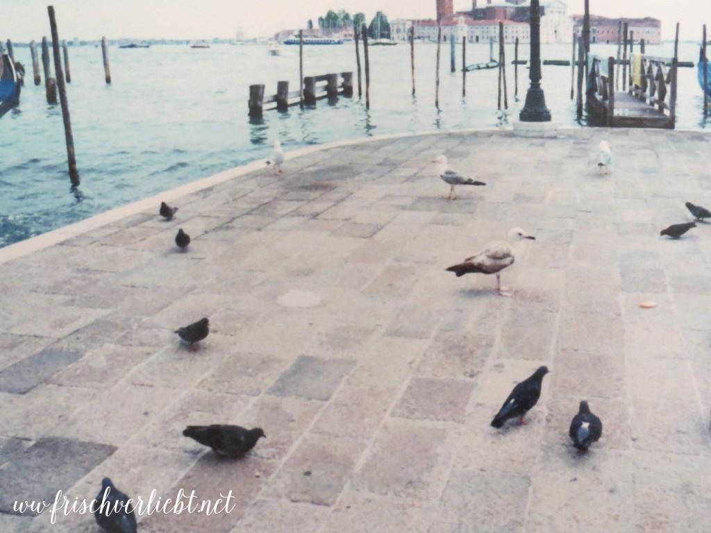 Italien_Venedig_Verona_Gardasee_Frisch_Verliebt_2