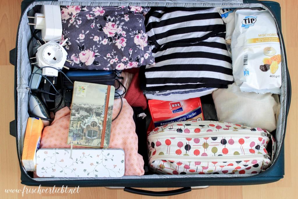 Whats_in_my_Bag_St_Petersburg_Frisch_Verliebt_2