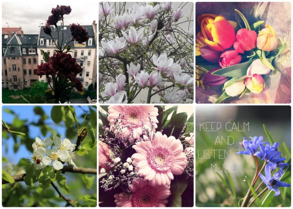 Instagram_Frisch_Verliebt_2