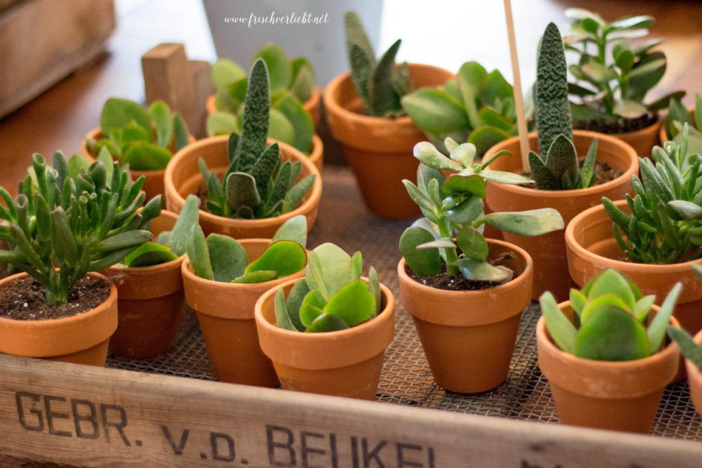 mint&berry_Flower_Market_Berlin_Frisch_Verliebt (8)